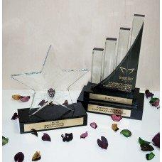 Стеклянные награды индивидуальных форм